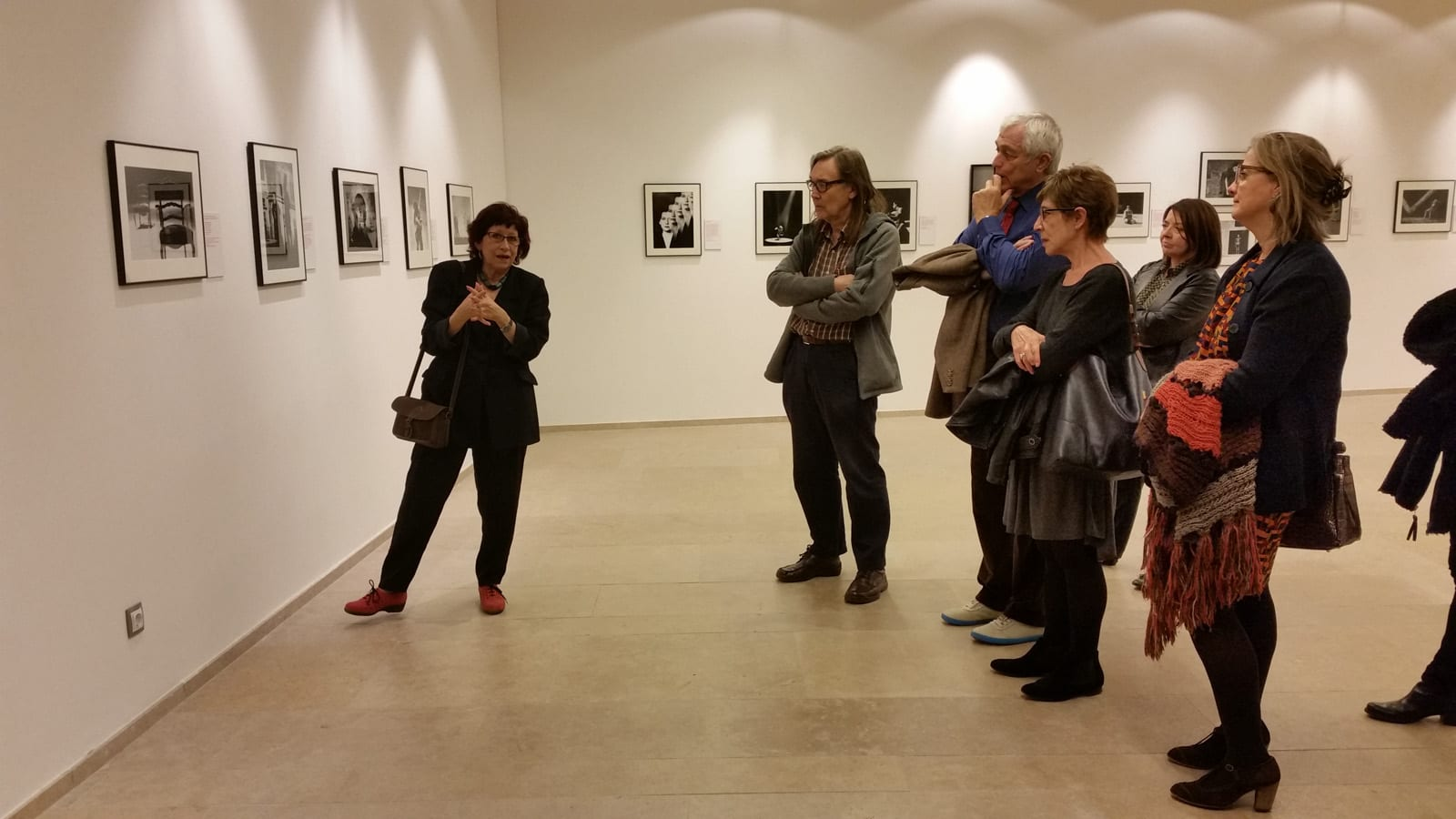 Visita guiada a l'exposició Emocions 6/11/2014