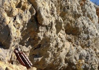 al Montsec encara es troba material de l'època en què Boix hi va ser, com aquesta granada de mà localitzada el març de 2019 entre el Pas de les Eugues i el Puig del Camí Ramader al Montsec de Meià. (Foto: Xavier Fontanals Palacios).